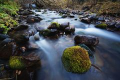 River in mountain forest Royalty Free Stock Photography