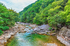 River in mountain forest in Korea Stock Image