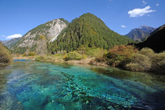 River and mountain in Jiuzhaigou Stock Images