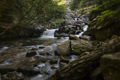 River in the Mountain. A Picture from a summer walk in Rila Mountain, Bulgaria royalty free stock photo
