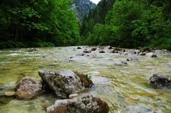 River Between Mountain Surrounded by Green Leaf Trees Royalty Free Stock Photos