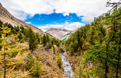River in mountain valley Royalty Free Stock Photography