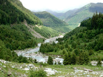 River between mountains. River comming out between Parang mountains in Romania royalty free stock images