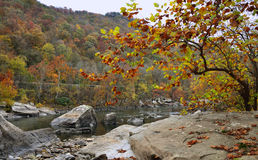 The river in the mountains. A river with rocky shores in the mountains Stock Photography