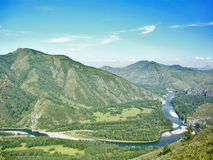River in the mountains. River flows in the mountains of Altai stock image
