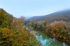The river in the mountains Stock Image
