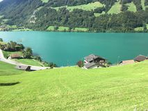 Train ride by Lake Brienz royalty free stock image