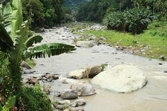 River in mountains on Flores Stock Image