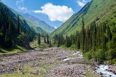 River in mountains of Kyrgyzstan Stock Photography