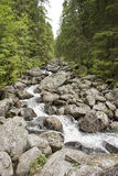 River in the mountains Stock Photos