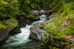 River in the mountains Royalty Free Stock Photos