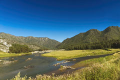 The river in mountains. Mountain river in the bright summer afternoon Stock Images