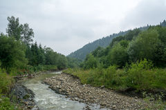 River in mountains. River in polish mountains (Beskidy, Poland Royalty Free Stock Photos