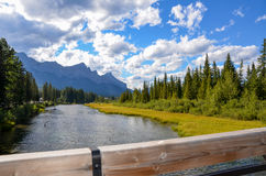 River and Mountains. River running through Canmore Alberta on a beautiful summer day Royalty Free Stock Photos