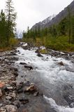River, mountains and woods. Royalty Free Stock Image