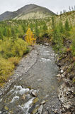 The river in mountains of Yakutia. Stock Photo