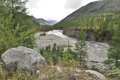 The river in mountains of Yakutia. Royalty Free Stock Photography