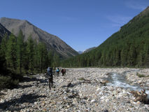 River in the Mountains. Yungur river in the Altai mountains Stock Photography