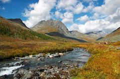 River in the mountais. Altay Royalty Free Stock Image