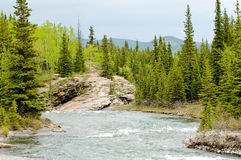 River in the mountians Stock Photography