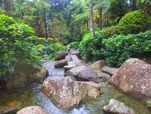 River in the forest. This is in the japanese village park in genting highland in malaysia Royalty Free Stock Photos