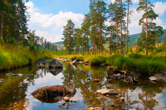 River on mt. Zlatibor Stock Photo