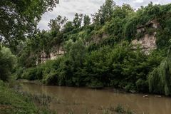 A river with muddy yellow water flows near a cliff overgrown with greenery. stock photos