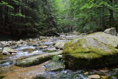 River Mumlava. In Krkonoše mountains, Czech Republic. An exclusive photo for using in newspapers, website etc. 7th July 2015 Royalty Free Stock Photos