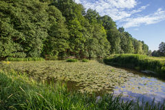 The river Naab in Bavaria Royalty Free Stock Photo