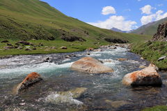 River. In naryn region, Kyrgyzstan Royalty Free Stock Photography