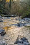 River is a natural flowing watercourse stock images