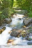 Cataract viewing,cataract picture,cataract image,water leap viewing,water leap picture,,pollino,calabria,italy. Nature reserve of the river Argentine . orsomarso Stock Images