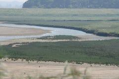 River. Nature Reserve (Het Zwin) bordering Belgium Netherlands Stock Image