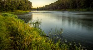 River near forest. At long exposure during sunset royalty free stock images