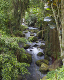 River Near Gunung Kawi Temple in Bali Indonesia Royalty Free Stock Photos