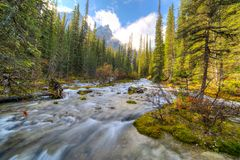 River falling into Moraine lake Stock Images