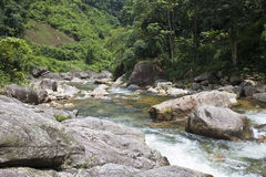 River near Sapa Stock Images
