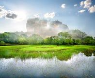 River near Sigiriya Royalty Free Stock Image