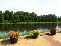 River Nemunas, trees and flowers, Lithuania royalty free stock photo