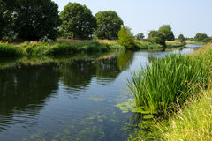 River Nene Stock Image
