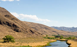River in Nevada desert Royalty Free Stock Image