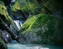 River in New Zealand. Narrow Gulch in New Zealand Stock Photography