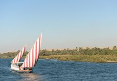 River Nile Royalty Free Stock Image