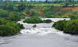 River Nile scenery near Jinja Royalty Free Stock Image