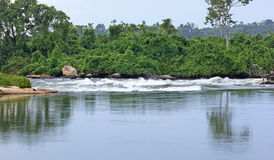 River Nile scenery near Jinja in Africa Stock Photography