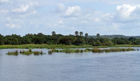 On the River Nile in Uganda. Looking out across the river Nile in Murchison Falls National Park, Uganda royalty free stock image
