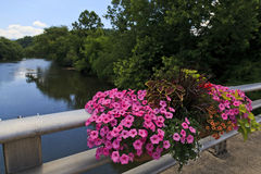 River in North Carolina Stock Images