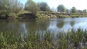 River in Northumberland, UK. River in Crookham, Northumberland England stock footage