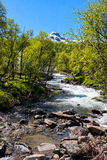 River in Norway Stock Image