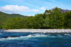 River in norway Stock Photography